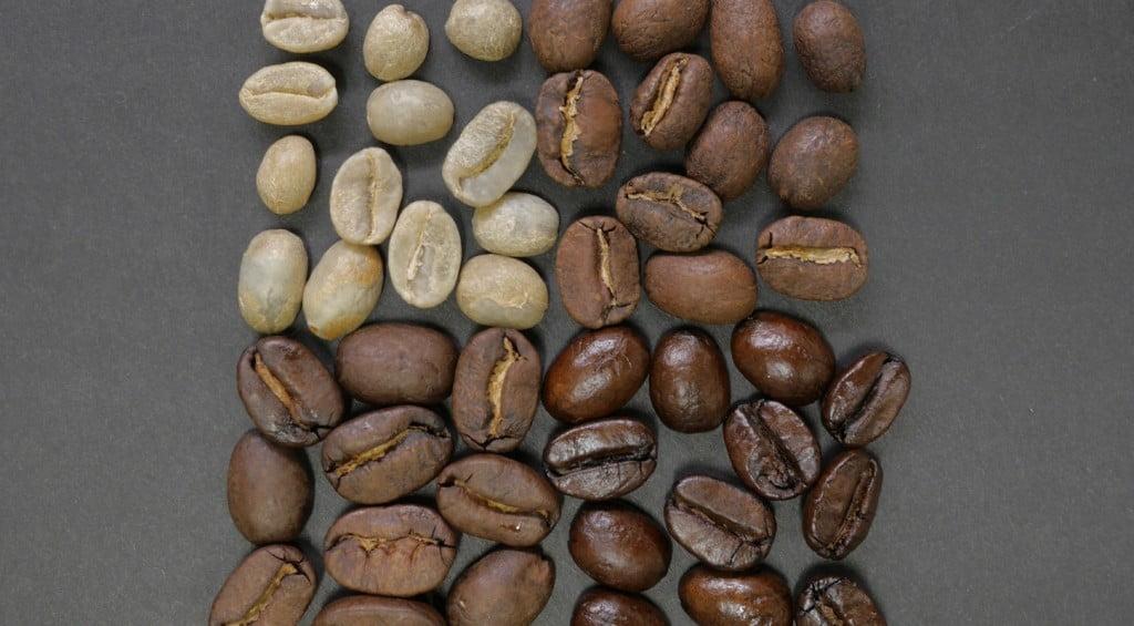 Ilustrasi beragam kopi, foto Nausnou Iwasaki