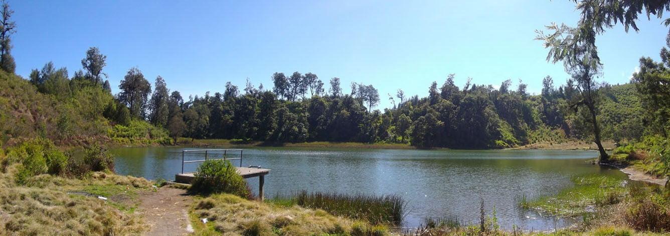 Danau Ranu Regulo : merupakan terusan dari Ranu Pane, posisinya bersebelahan dengan danau Pane, namun letaknya agak ke Barat. Disini pemandangannya lebih indah.