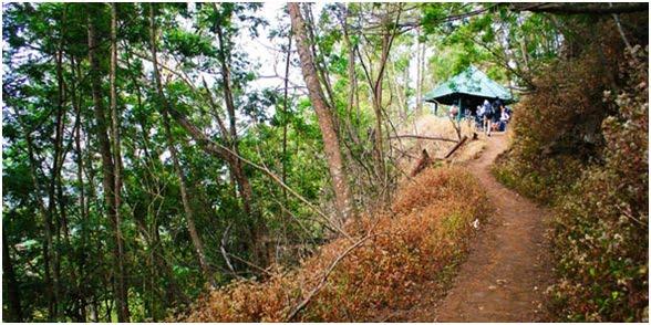 POS 1 : Landengan Dowo (2200 mdpl) : Pos satu ini jaraknya sekitar 1 jam pendakian normal dari Ranu Pane. Biasanya di pos ini juga terdapat penjual makanan dan minuman dari warga Ranu Pane. Harga makanan dan minuman bisa dua kali lipat dari harga normal. Maklum, untuk membawa dagangan mereka ke pos ini, warga harus menempuh jalur pendakian yang melelahkan.