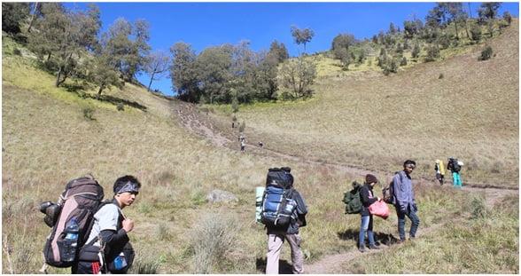 Bukit Tanjakan Cinta, di mana kami harus mendakinya hingga di ujung atasnya. Terlihat pendek kalau difoto dari samping. Tapi kalau Anda menjalani pendakian bukit ini akan terasa begitu melelahkan, terlebih sambil menenteng carier.