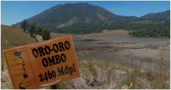 Oro-oro Ombo